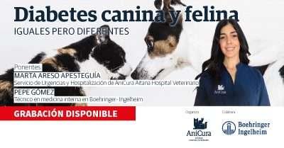 Diabetes canina y felina